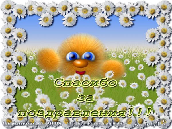 80967847_a6dfaf42b516.jpg