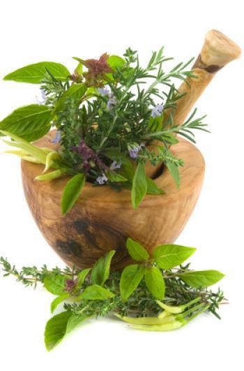 HerbsFotolia_6231010_XS (350x531, 26Kb)
