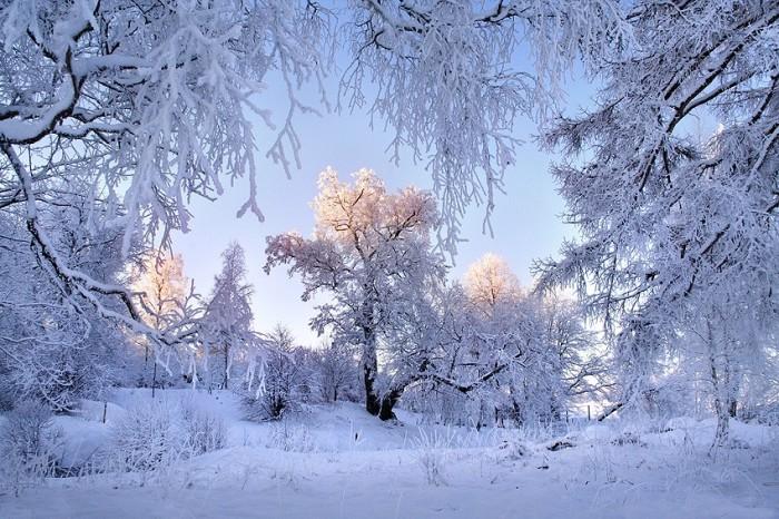 Зимние пейзажи 2 часть