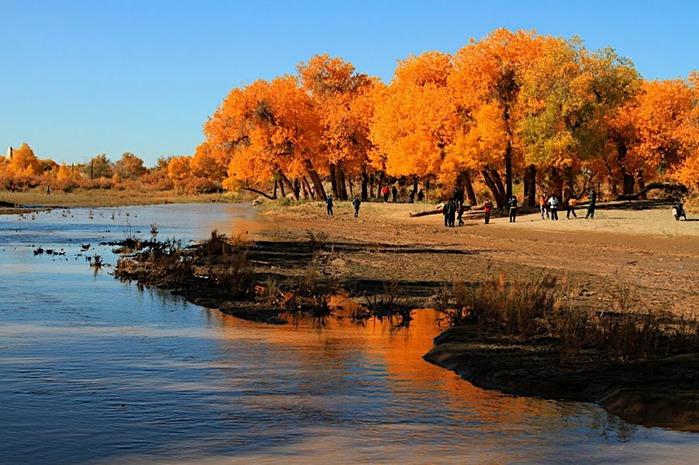 Геологический парк пустыни Алашань 74218