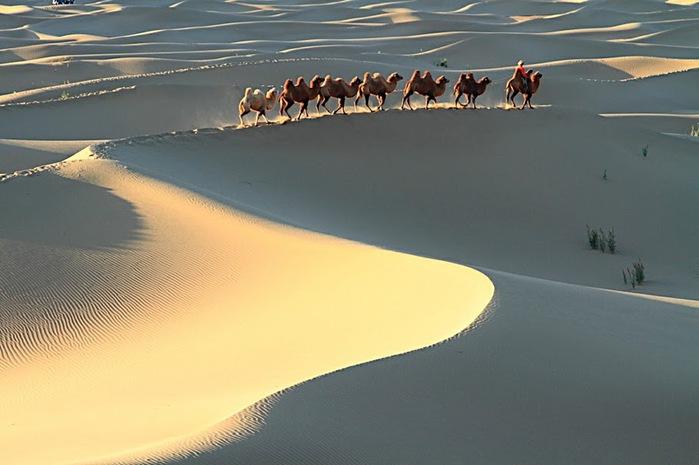 Геологический парк пустыни Алашань 93145
