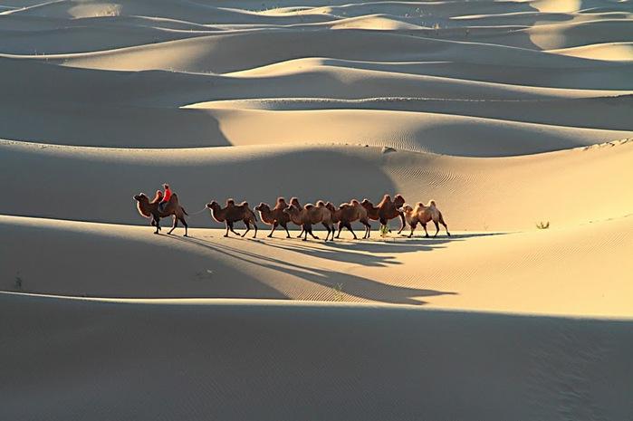Геологический парк пустыни Алашань 64578