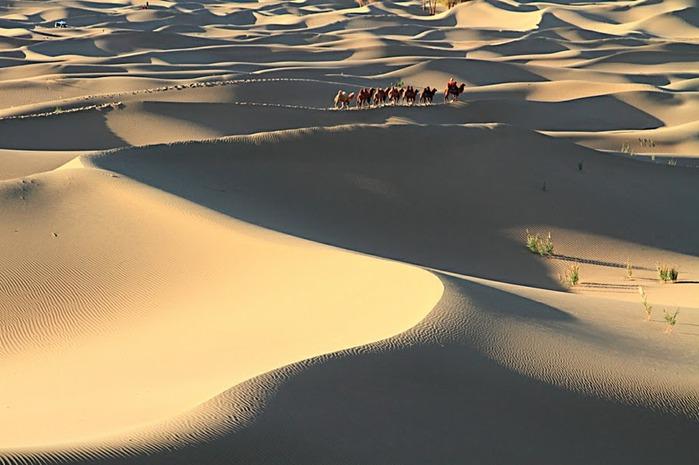 Геологический парк пустыни Алашань 44504