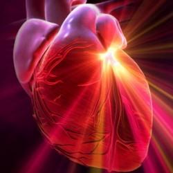 серд (250x250, 17Kb)