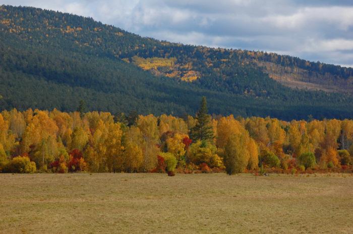золотая осень горы (700x465, 163Kb)