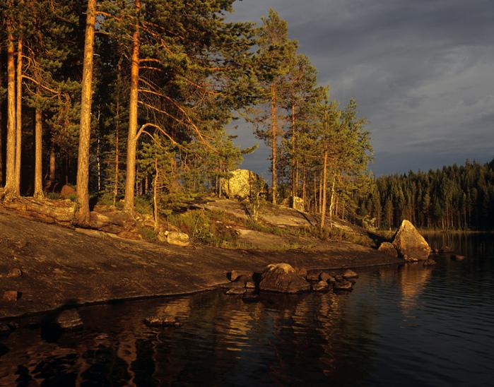 северный лес и река (700x548, 315Kb)