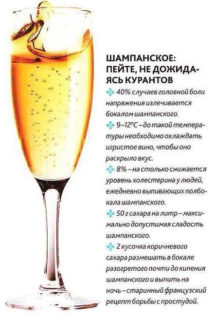 шампан (440x653, 51Kb)