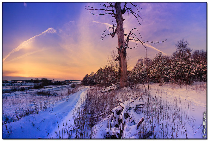 Красивые фото зимней природы