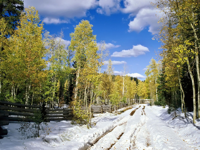 10 красивая зима (700x525, 557Kb)