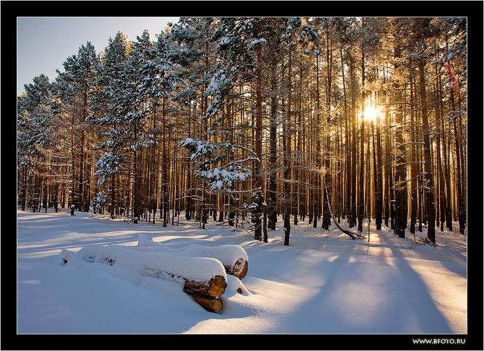 15 красивая зима (700x508, 214Kb)
