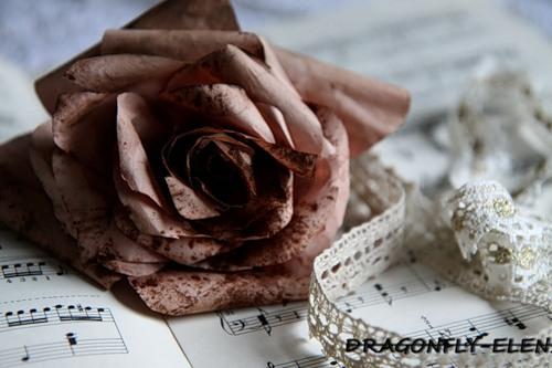 кофейная роза (500x333, 45Kb)