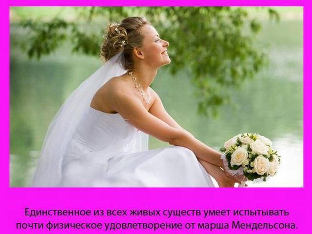 women_20 (640x480, 42Kb)