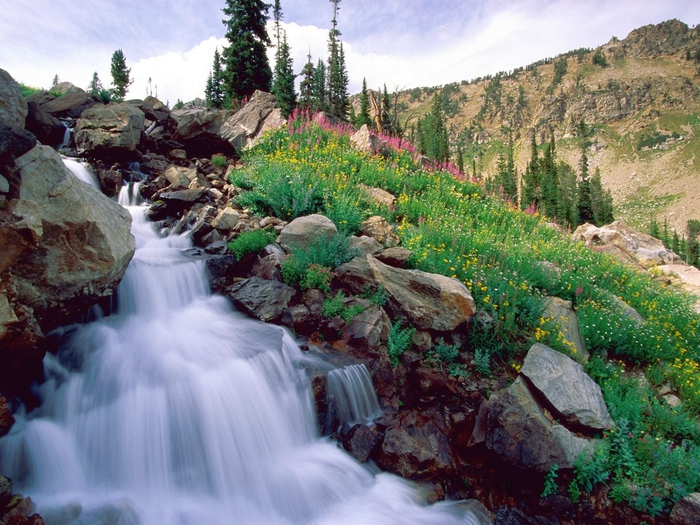 Rushing Waters of Spring, Grand Teton National Park, Wyoming (700x525, 344Kb)