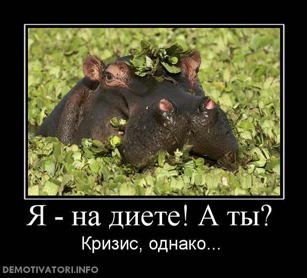 demotivatory-smeshnye-ya-na-diete-a-ty-kartinka_1 (450x407, 80Kb)
