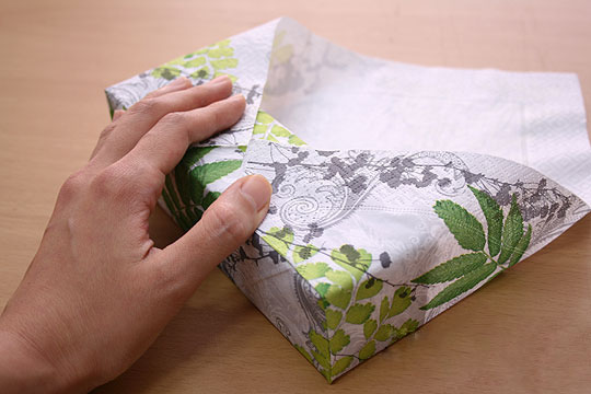 napkinwrap_bd6_bestworth (540x360, 55Kb)