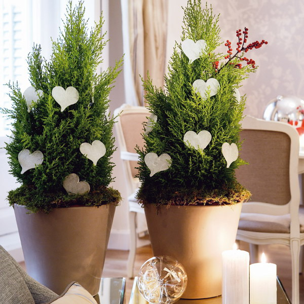home-flowers-in-new-year-decorating4-8 (600x600, 132Kb)