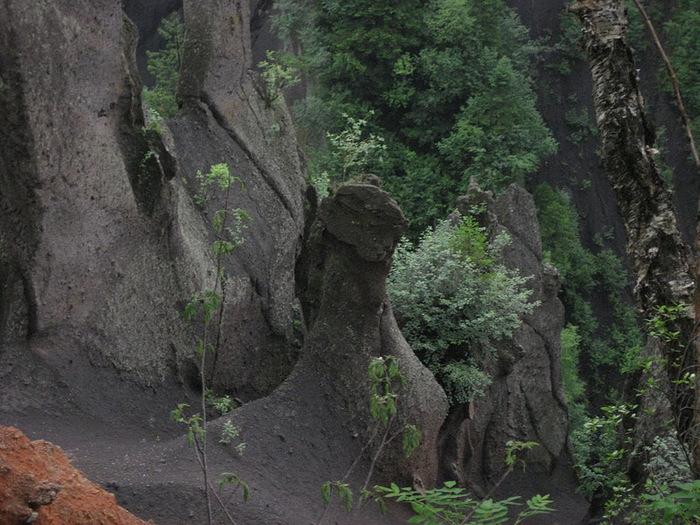 Чанбайшань – биосферный заповедник Китая 31896