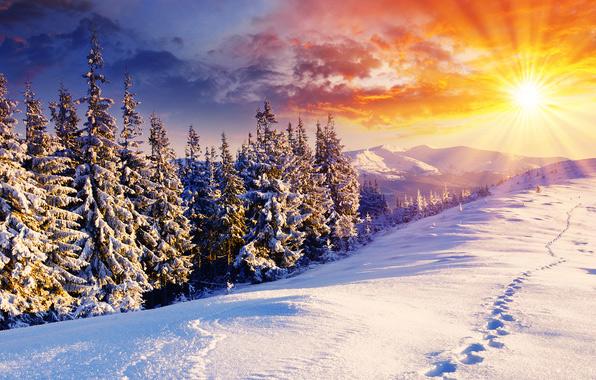 Зимний пейзаж/4348076_2Zimneesolnce (596x380, 149Kb)
