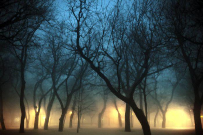 fog_10 (700x467, 46Kb)
