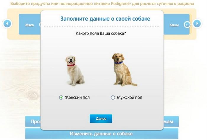Сбалансированный рацион - залог здоровья вашей собаки