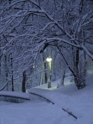 снегго (300x400, 98Kb)