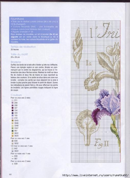 Tableau iris en point de croix le monde creatif - Grille indiciaire attache administration ...
