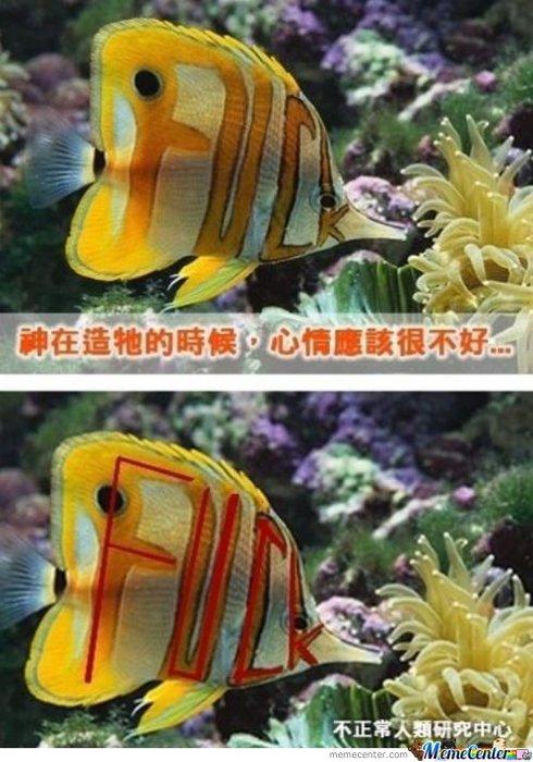 Gangsta-fish_58cc0bd15099bbd4f29801f598b66cce (490x700, 77Kb)