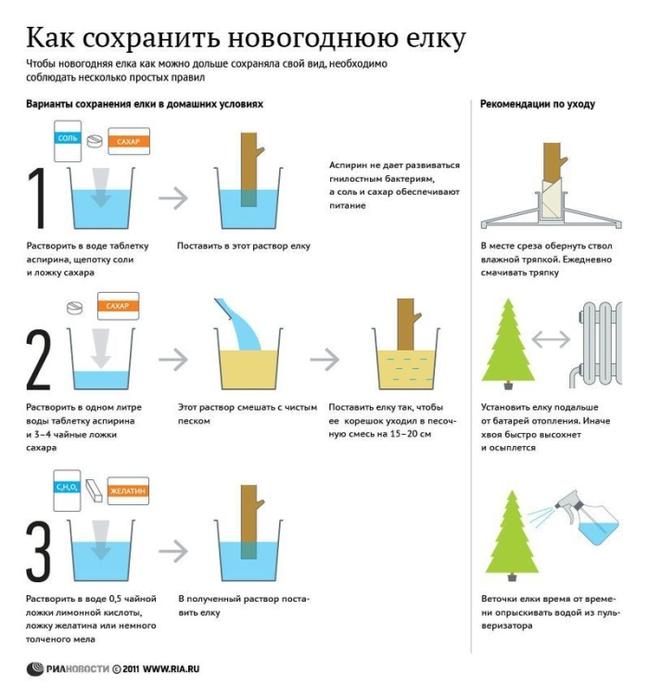 infografika_08 (649x700, 154Kb)