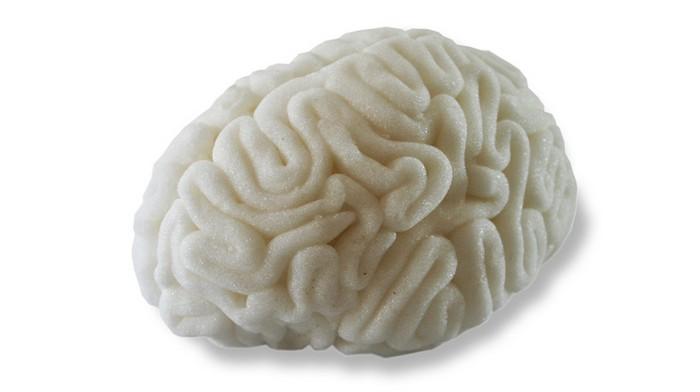 3925073_brain6 (700x392, 31Kb)