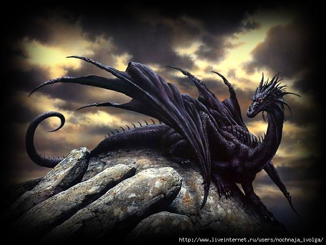 дракон черный (665x500, 217Kb)