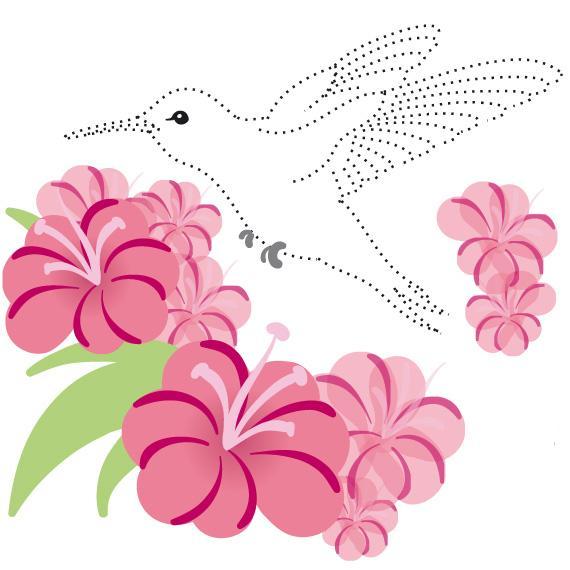 kolibri-01 (570x570, 54Kb)