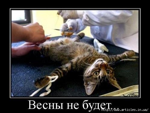 1267718345_788809_vesnyi-ne-budet (499x376, 96Kb)