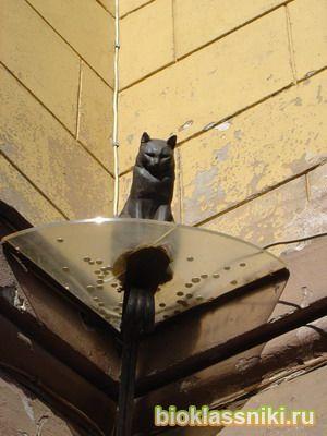 памятник кошкам блокадного Ленинграда (300x400, 22Kb)