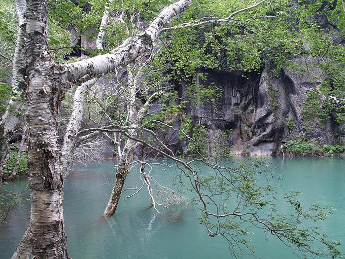 Чанбайшань – биосферный заповедник Китая 76281