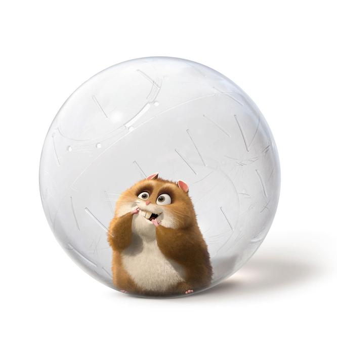 В прогулочном шаре можно выпускать шушиков бегать по квартире.  Это удобно когда нет