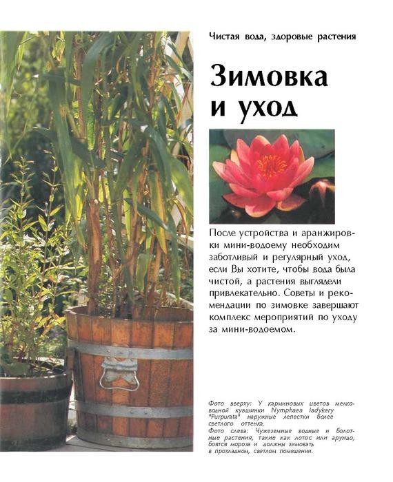 Mini-vodoemy na balkone i terrase - Valter Shimana_Страница_51 (570x700, 121Kb)