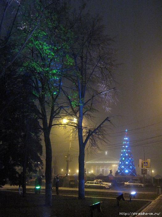 Воронеж, новый год 2012, 1 (525x700, 258Kb)