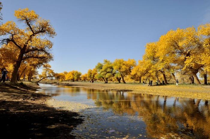 Геологический парк пустыни Алашань 94505