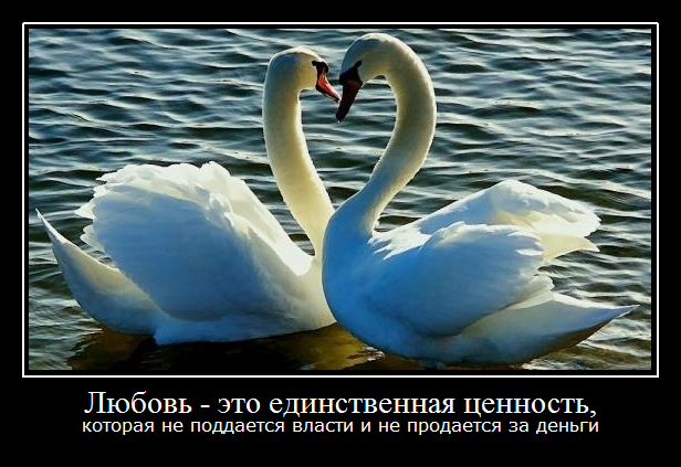 1 любовь - единственная ценность (616x423, 353Kb)