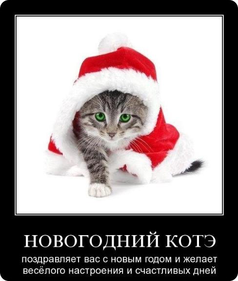 81153862_Novuyy_god_pozdravlenie (488x576, 189Kb)