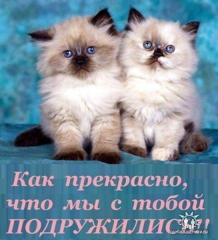 1323885101_prekrasn_chto_podruzhilis_ (436x480, 41Kb)