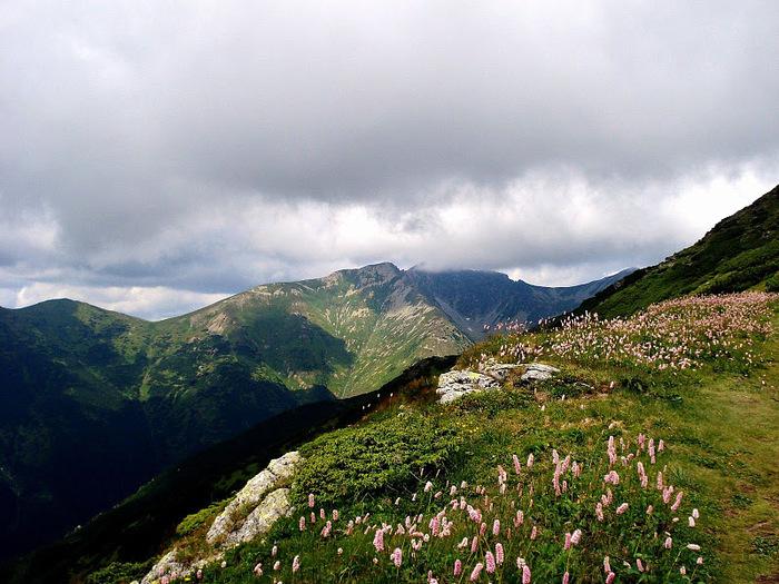 Природа - Татры 45189