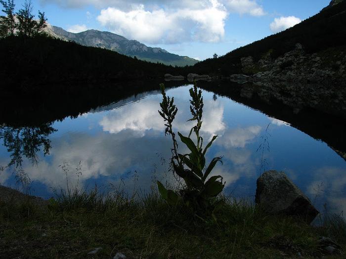 Природа - Татры 71785