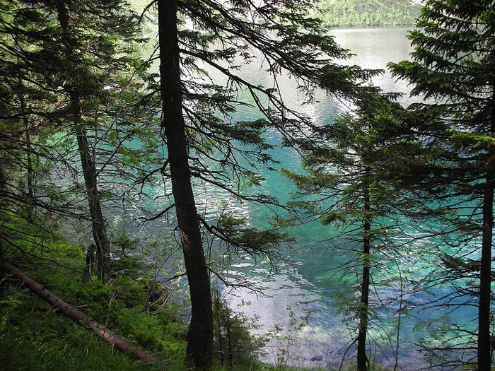 Природа - Татры 94343