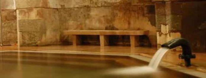 Королевская купальня/2741434_4545 (695x263, 21Kb)