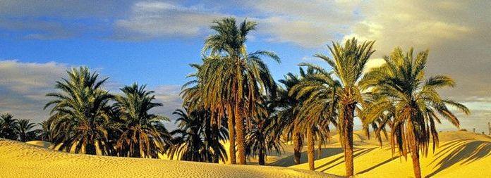 Тунис/2741434_102 (696x253, 51Kb)