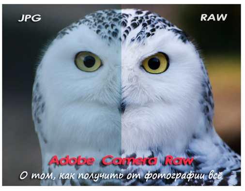 3979564_raw (506x395, 19Kb)