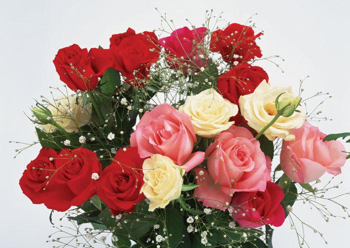 flowers040 (700x497, 95Kb)