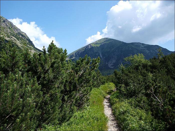 Природа - Татры 59073