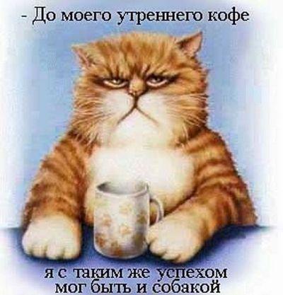 кот (400x417, 29Kb)